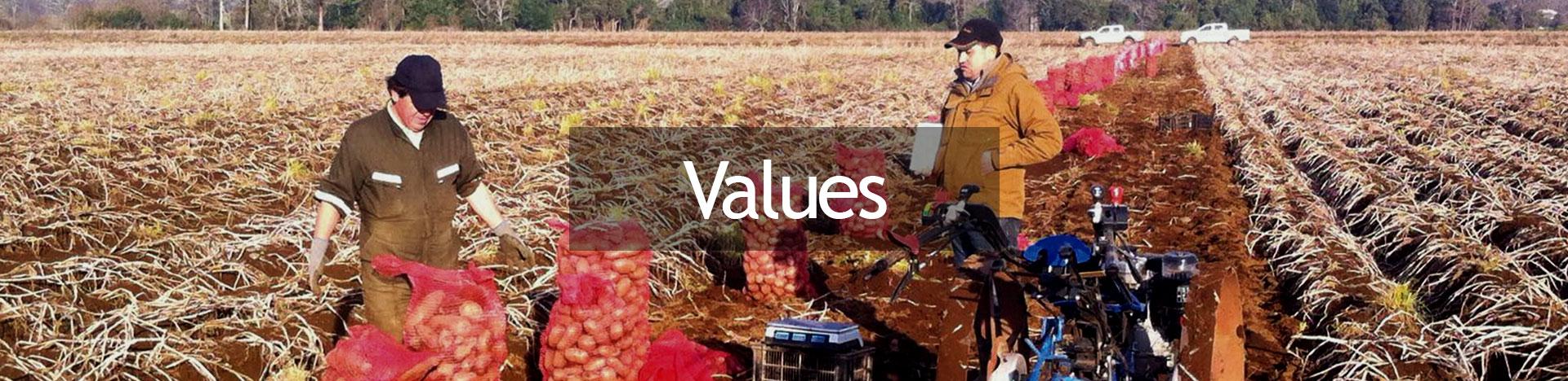 valores-ingles